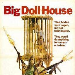 Movies Similar to the Big Doll House (1971)